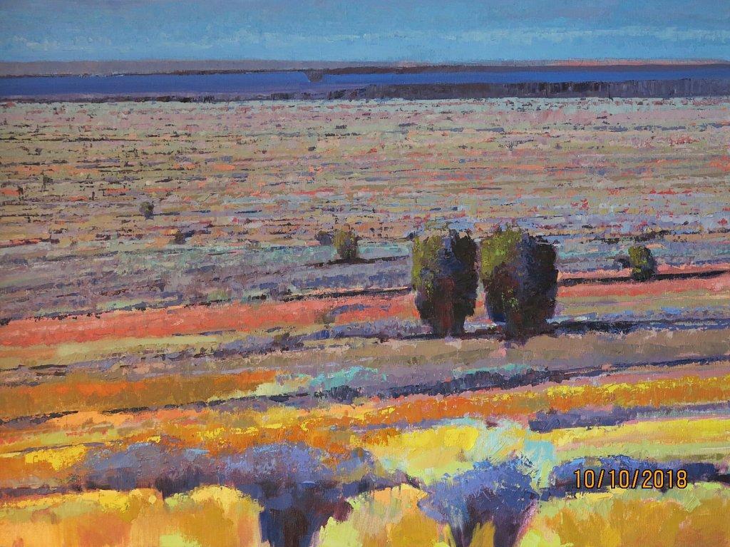 Long Desert View